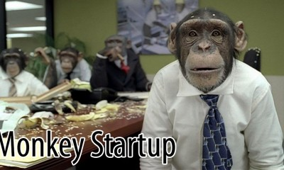 Monkey Startup_2