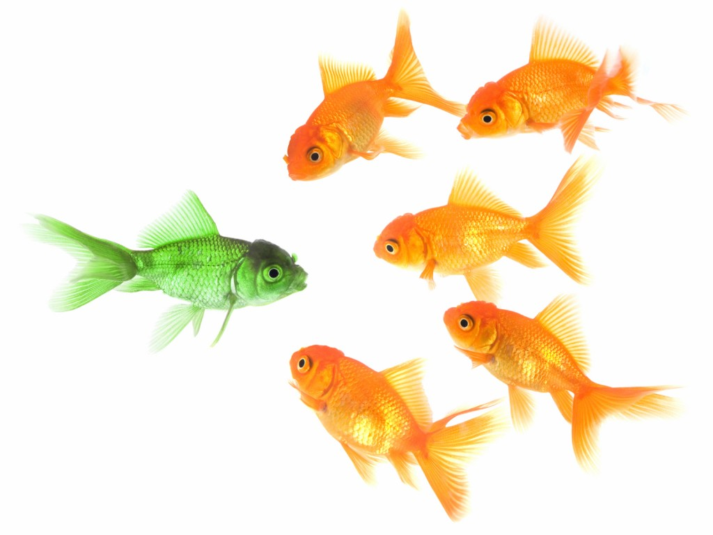 green_goldfish