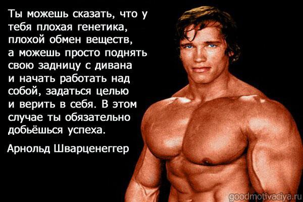 Motivaciya-ot-Arnolda